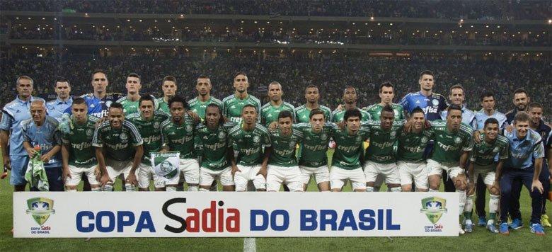 Campeão Copa do Brasil 2015 - Palmeiras