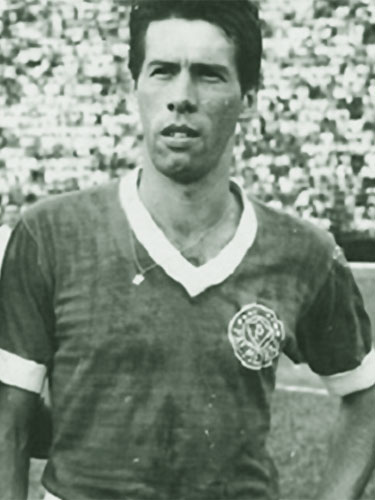 Geraldo Scalera