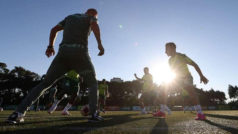 Jogadores do Palmeiras realizam treino na Academia de Futebol